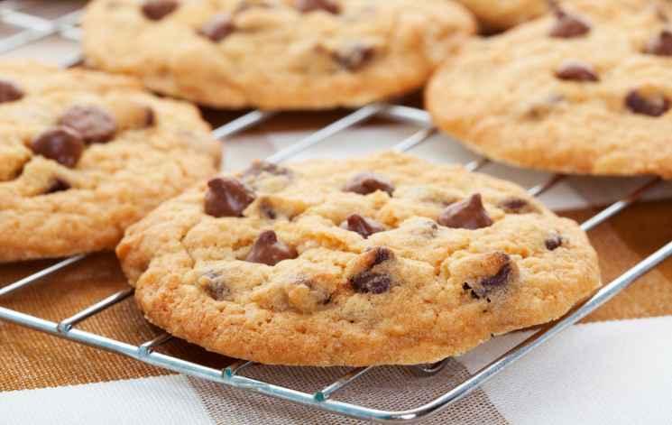 Tudo sobre cookies. Cookie é um grupo de dados trocados entre o navegador e o servidor de páginas, colocado num arquivo (ficheiro) de texto criado no computador do utilizador..