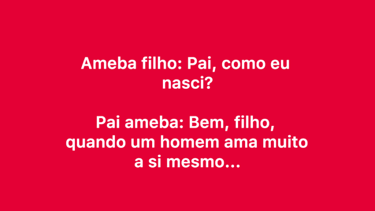 Ameba pai e ameba filho. O ameba filho pergunta para o pai: como eu nasci? Confira kkk.