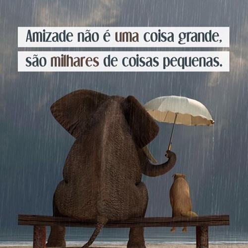 Amizade não é uma coisa grande. Amizade, não é uma coisa grande, são milhares de coisas pequenas ☺.