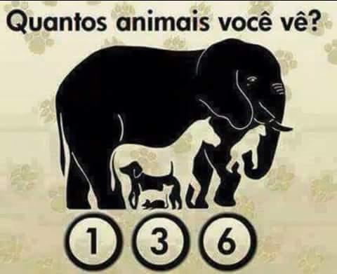 Quantos animais você vê na imagem?. E aí, quantos animais você consegue ver na imagem...?.