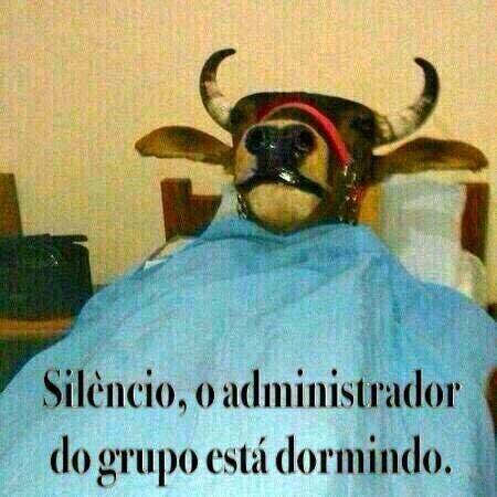Silêncio: O administrador do grupo está dormindo.