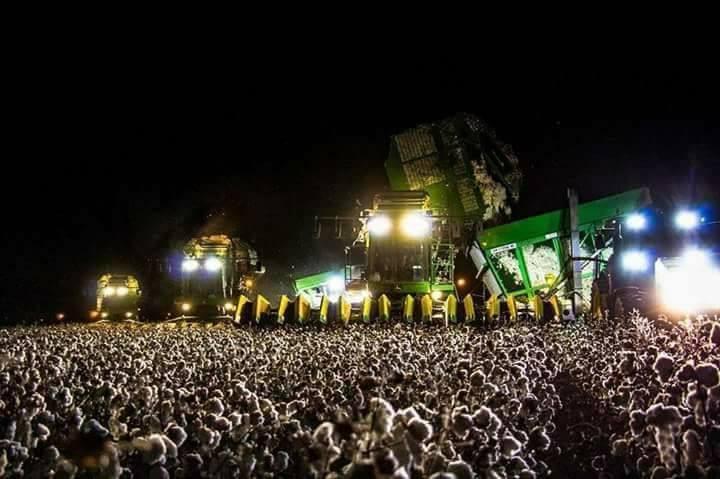 Parece um festival de música eletrônica...