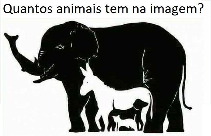 Quantos animais voce ve na imagem?