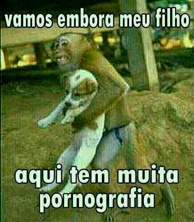 Aqui tem muita pornografia. Macaco segurando um cão pedindo ele pra ir embora, por que tem muita pornografia kkkkk.