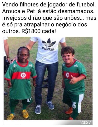 Filhotes de jogador de futebol