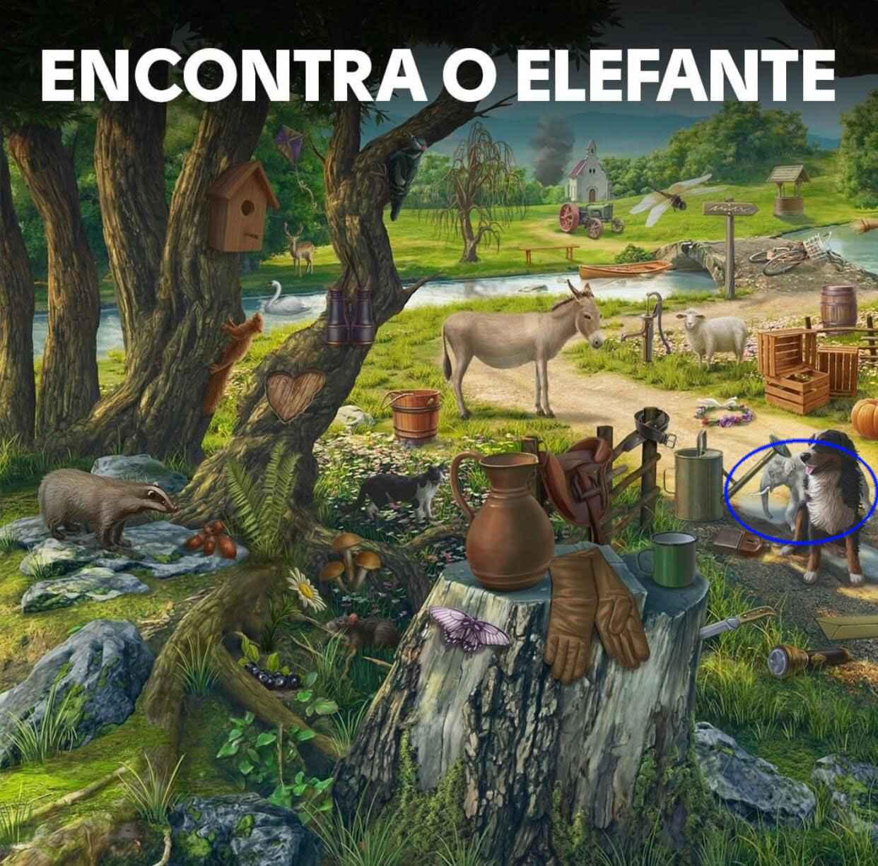 econtra-encontre-o-elefante-resposta